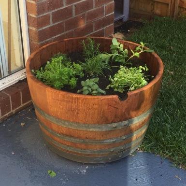plant barrel